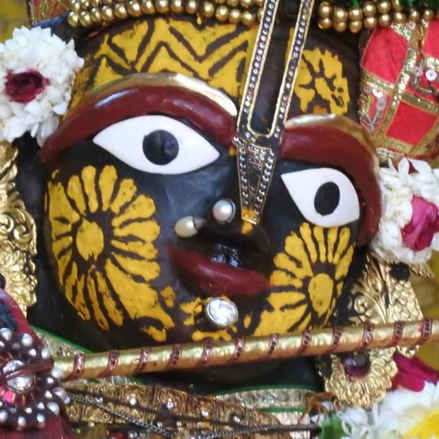Radha Govind Devji Deity Darshan 01 Mar 2016 (6)