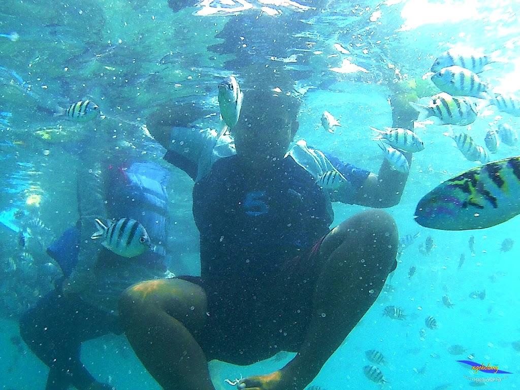 pulau harapan, 5-6 september 2015 skc 022