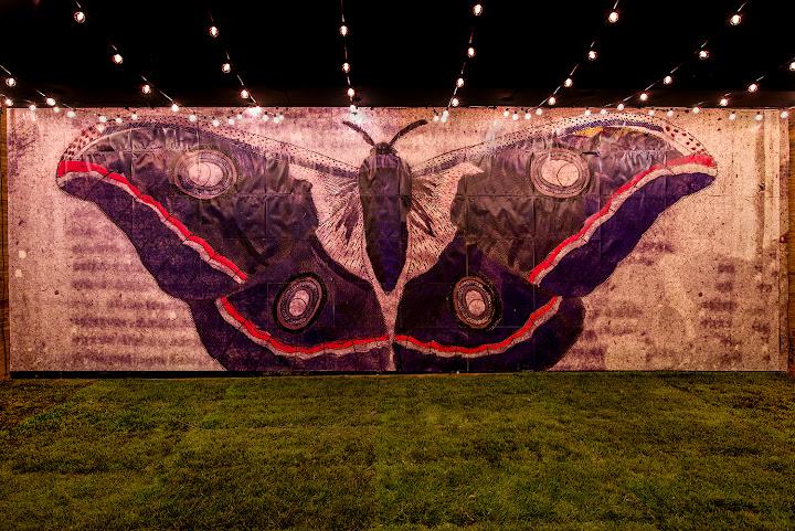 Artist of the Month: Adam Siegel