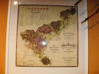 Részletek az Erdőjárók kalauza-Zemplén természeti értékeit bemutató kiállításból8.jpg