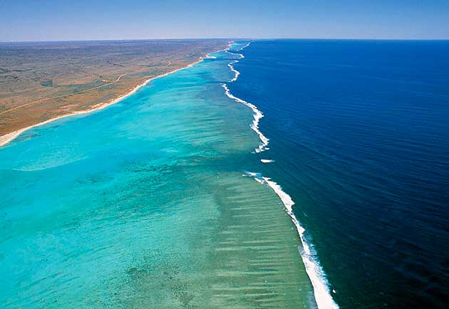 Coral Bay e Ningaloo Marine Reef