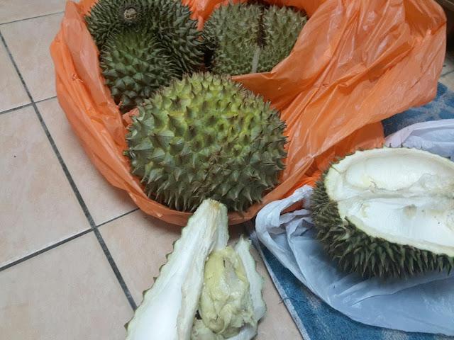 Durian Kampung 7 Biji Sekali Beli !