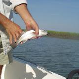 Fishing 002.jpg