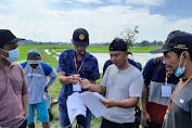 Pelatihan Teknis Tematik Agribisnis Tanaman Padi, Begini Harapan Kepala BPP dan Petani di Lamasi Luwu