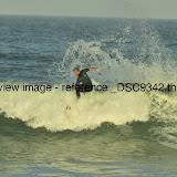 _DSC9342.thumb.jpg