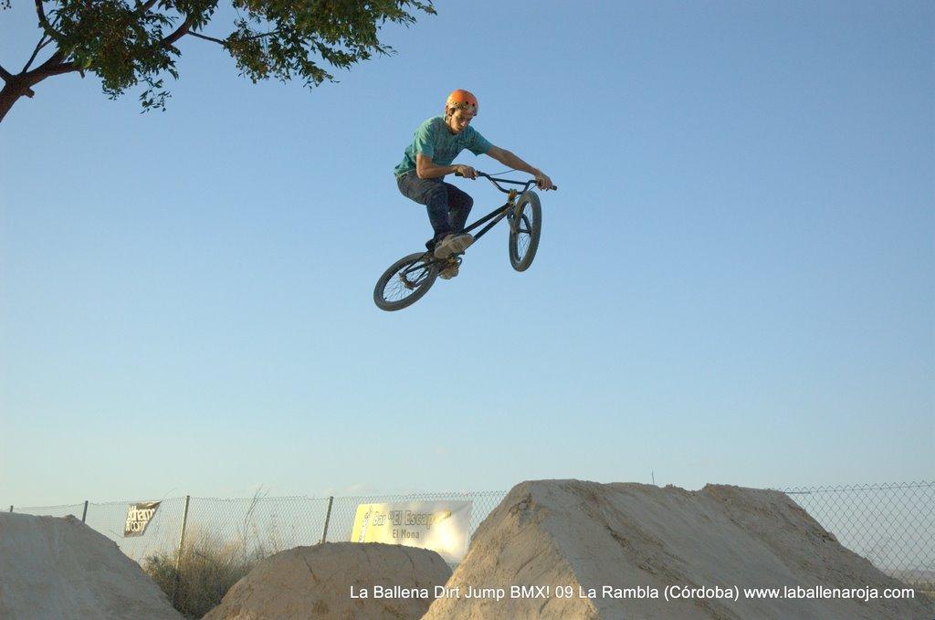 Ballena Dirt Jump BMX 2009 - BMX_09_0120.jpg