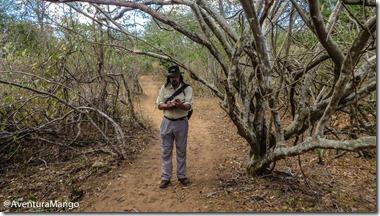 Mapeamento e classificação das trilhas