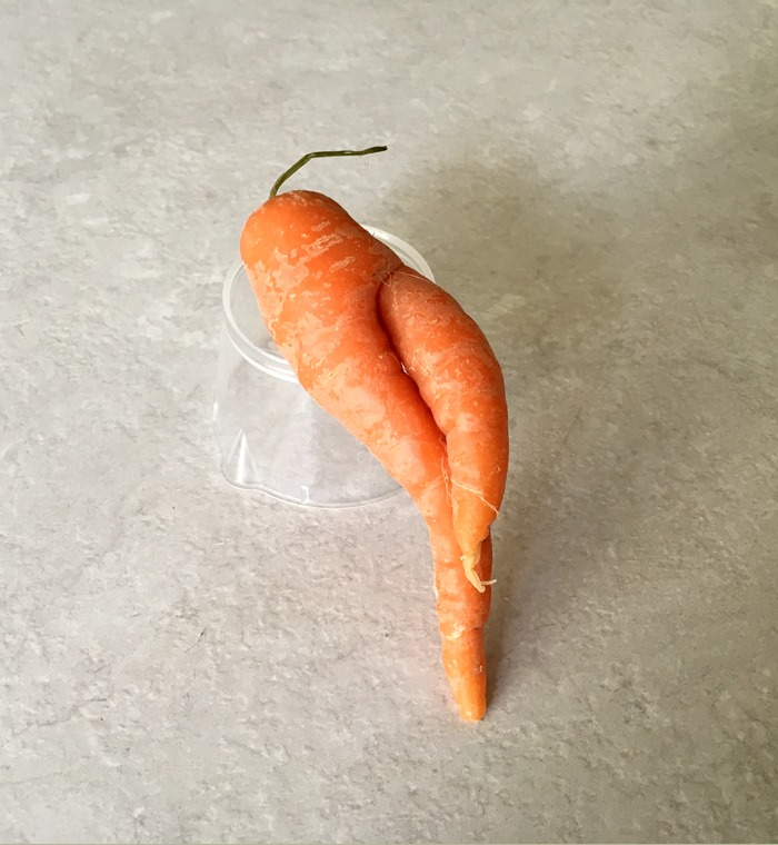 Relaxed Carrot 19-9-18