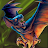 Ice Bat avatar image