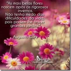 augusto-cury-331