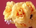 Flor_658766122_068_flores.jpg