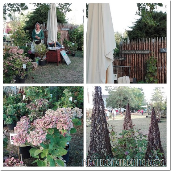 IMG_20160918_181605-COLLAGE