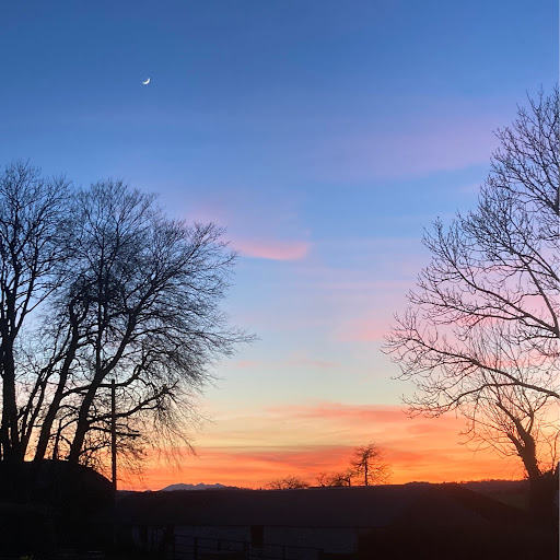Brian Buckley - Address, Phone Number, Public Records | Radaris
