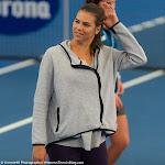 Ajla Tomljanovic - Brisbane Tennis International 2015 -DSC_7592.jpg