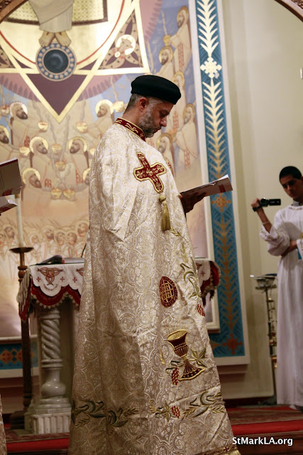 Rites of receiving Fr. Cyril Gorgy - _MG_1019.JPG