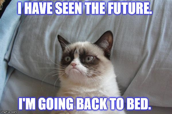[GRUMPY+CAT+HAS+SEEN+THE+FUTURE%5B2%5D]
