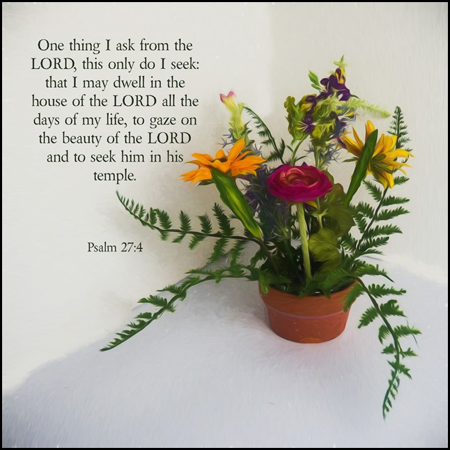 Scripture and a Snapshot 2017 - Week 7.  Psalm 27:4
