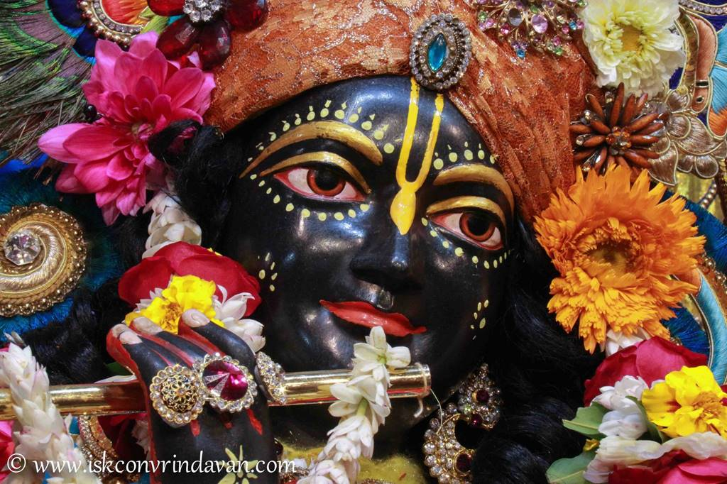 ISKCON Vrindavan Sringar Deity Darshan 03 Feb 2016 (15)