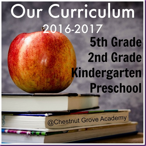 Curriculum at Chestnut Grove Academy