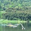 PANAMERICANO PUERTO RICO 2013 (5).jpg