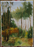 jesień w Międzyzdrojskim Lesie, olej, płótno, szpachla, 35/50 cm