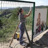 Igienizare si amenajare parcare de la Hula Baznei - 2013 - 1176307_683245035037876_1065719714_n.jpg