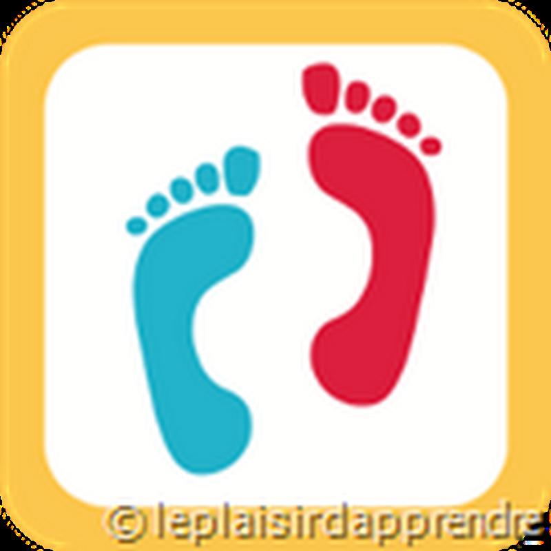 Belajar Bahasa Prancis dalam Langkah demi Langkah
