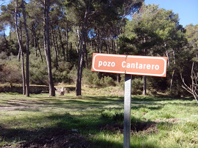 Fuente del Pozo Cantarero Pinares de Zuera