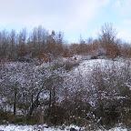 2012 7 Decembrie 016.jpg