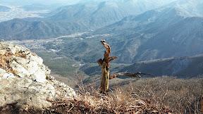 영남알프스 가지산 (배내고개-가지산-상운산)