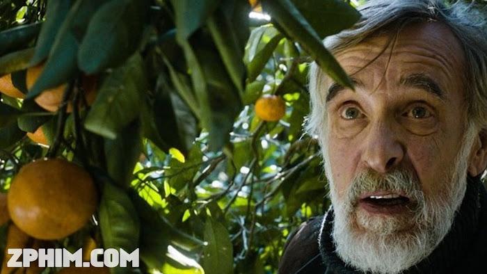 Ảnh trong phim Mùa Quýt - Tangerines 1