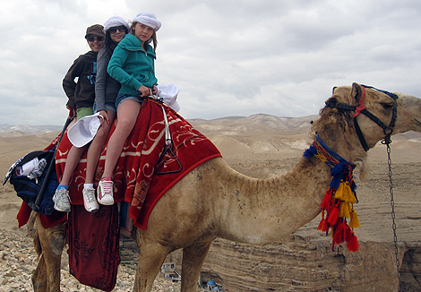on a camel in wadi qelt.jpg