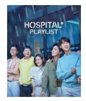 Hospital Playlist Season 2 Sub Indo