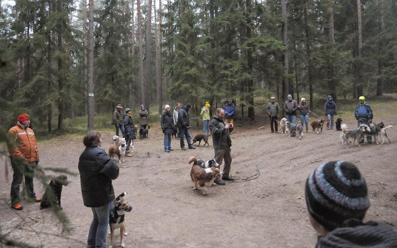 20140101 Neujahrsspaziergang im Waldnaabtal - DSC_9798.JPG