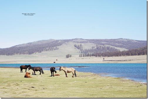 Mongolia46