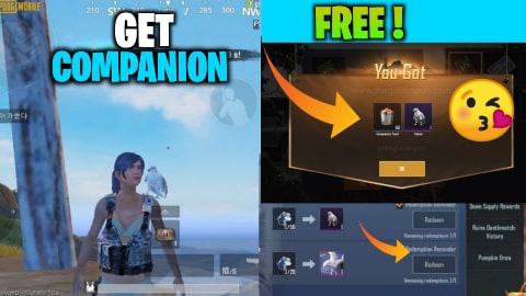 How To Get Falcon / Companion  In Pubg Mobile Lite