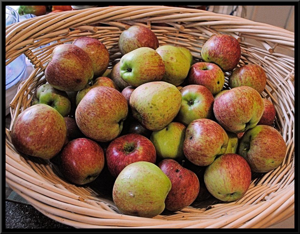 [apples2017%5B3%5D]