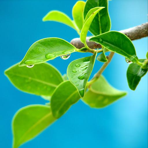 story urdu sex site Any
