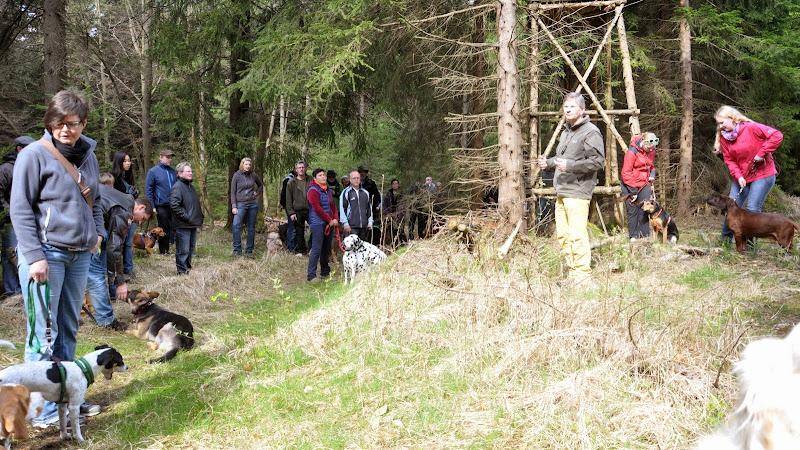 2014-04-13 - Waldführung am kleinen Waldstein (von Uwe Look) - DSC_0410.JPG