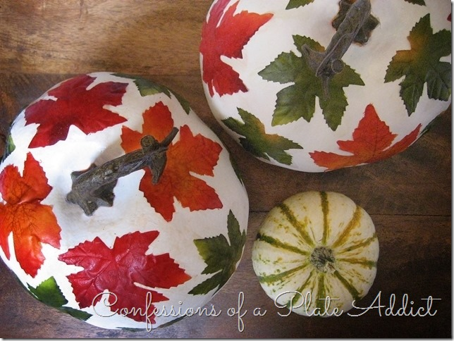 CONFESSIONS OF A PLATE ADDICT Botanical Decoupage Pumpkins