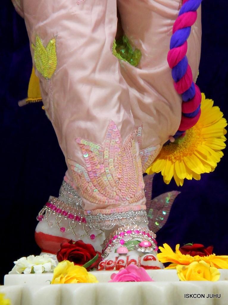 ISKCON Juhu Sringar Deity Darshan 5 Jan 2017 (32)