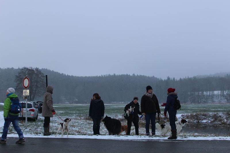 01. Januar 2016: Neujahrswanderung ins Waldnaabtal - IMG_1485.JPG
