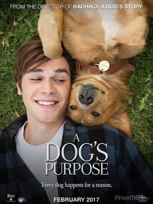 Mục Đích Sống Của Một Chú Chó - A Dog's Purpose