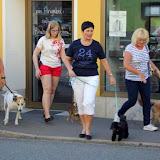 7. Juni 2016: On Tour in Neustadt a.d. Waldnaab - Neustadt%2Ban%2Bder%2BWaldnaab%2B%252825%2529.jpg