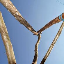 Taborjenje, Lahinja 2006 1.del - P0097241.JPG
