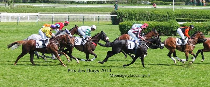 Photos Auteuil 8-06-2014  IMG_1790