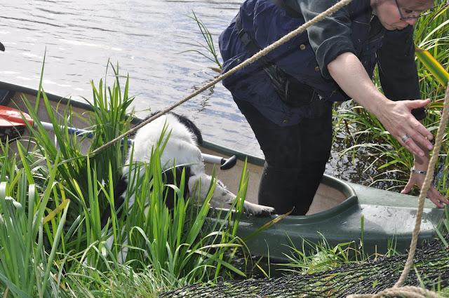 Survival voor Baas en Hond 2012 - DSC_0076.JPG