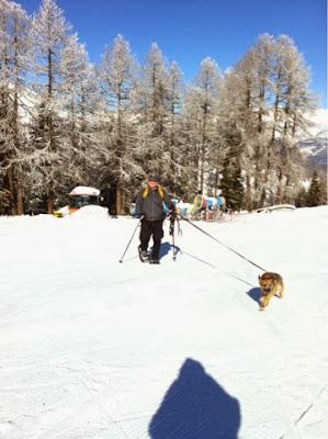 Hannigalp im Wallis: Ziel der Schneeschuhtour mit Hund