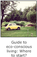 guide to eco-conscious living - where to start?