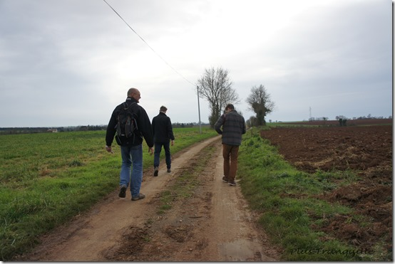 Nice Walk